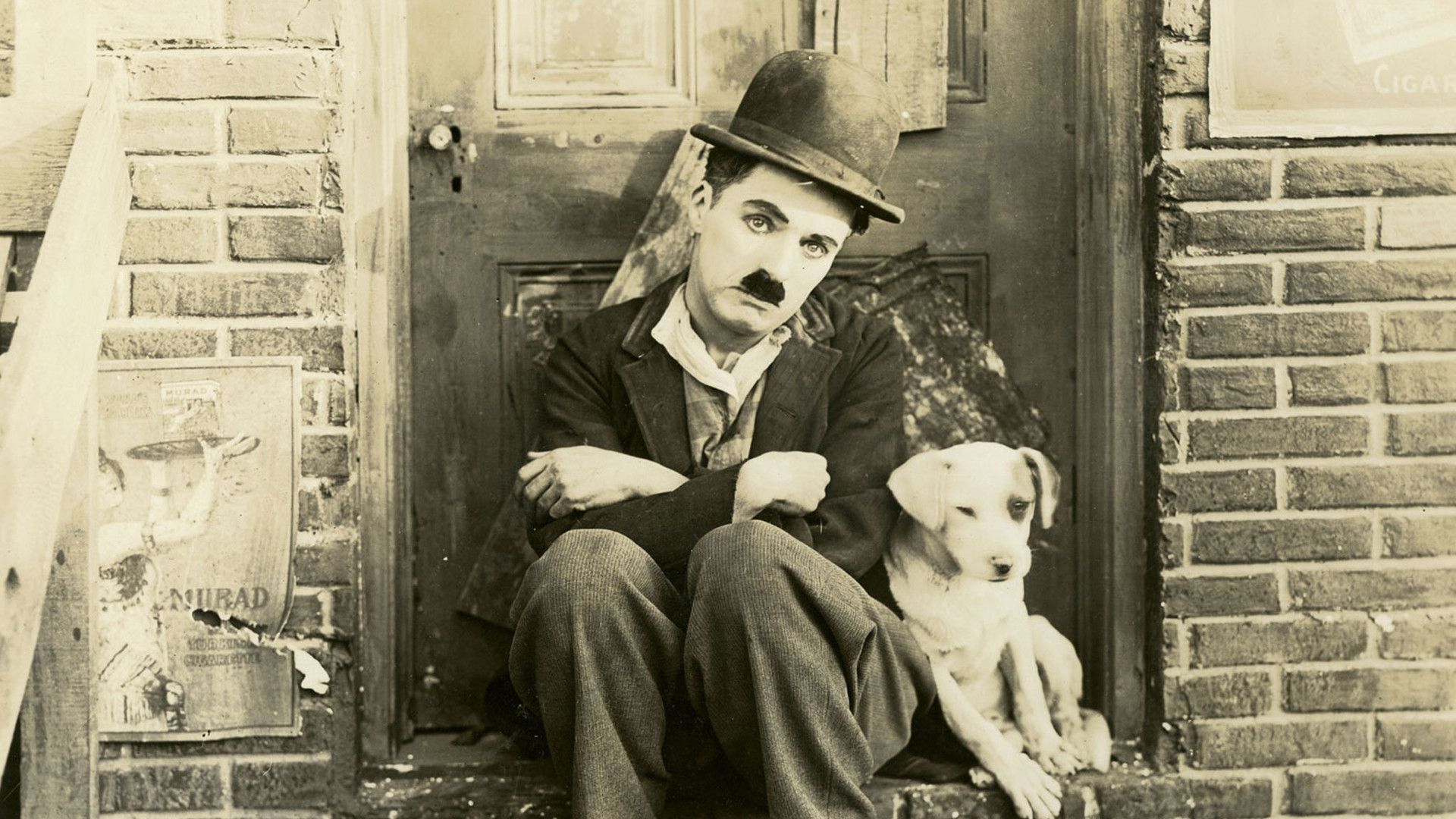 an introduction to the life and film by charlie chaplin It was the last film using the tramp, and ends with chaplin pleading for love and freedom it was with these more involved productions of the 1930s and 1940s that chaplin achieved true greatness as a film director.