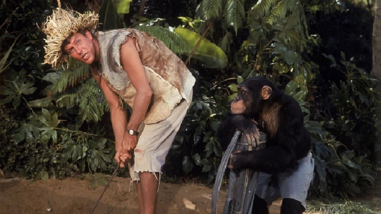 deserted island movies The best desert island movies offer adventure as they showcase the lead characters' will to survive desert island films often feature one man's journey, but some of the best shipwrecked movies include star-studded casts.