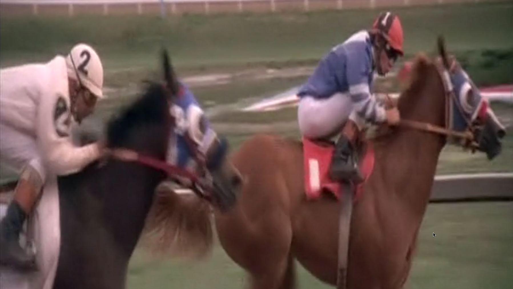 Horse Tube  18QT Free Porn Movies Sex Videos