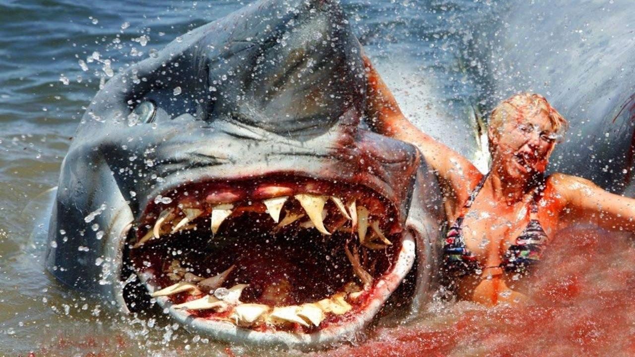 Shark Attack TV Movie 1999  IMDb