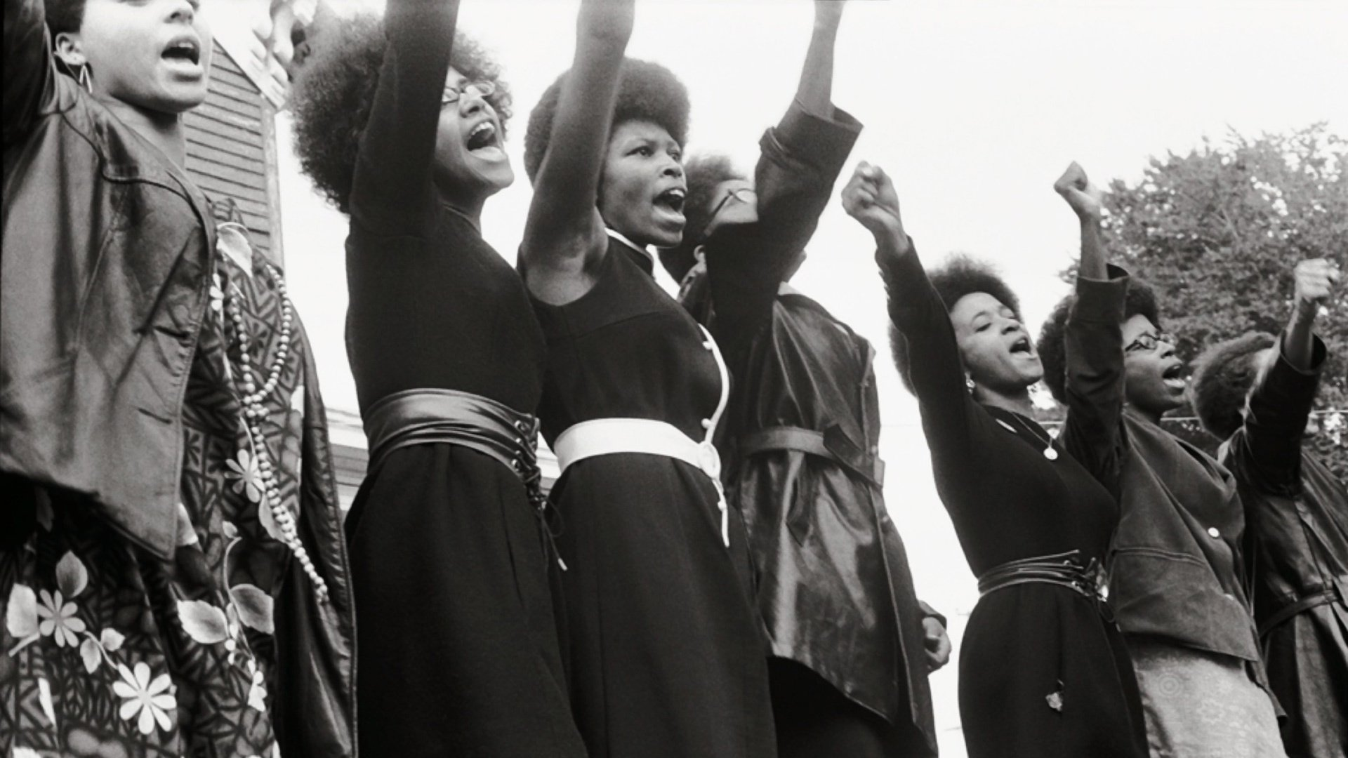 the significance of the black panthers in american history