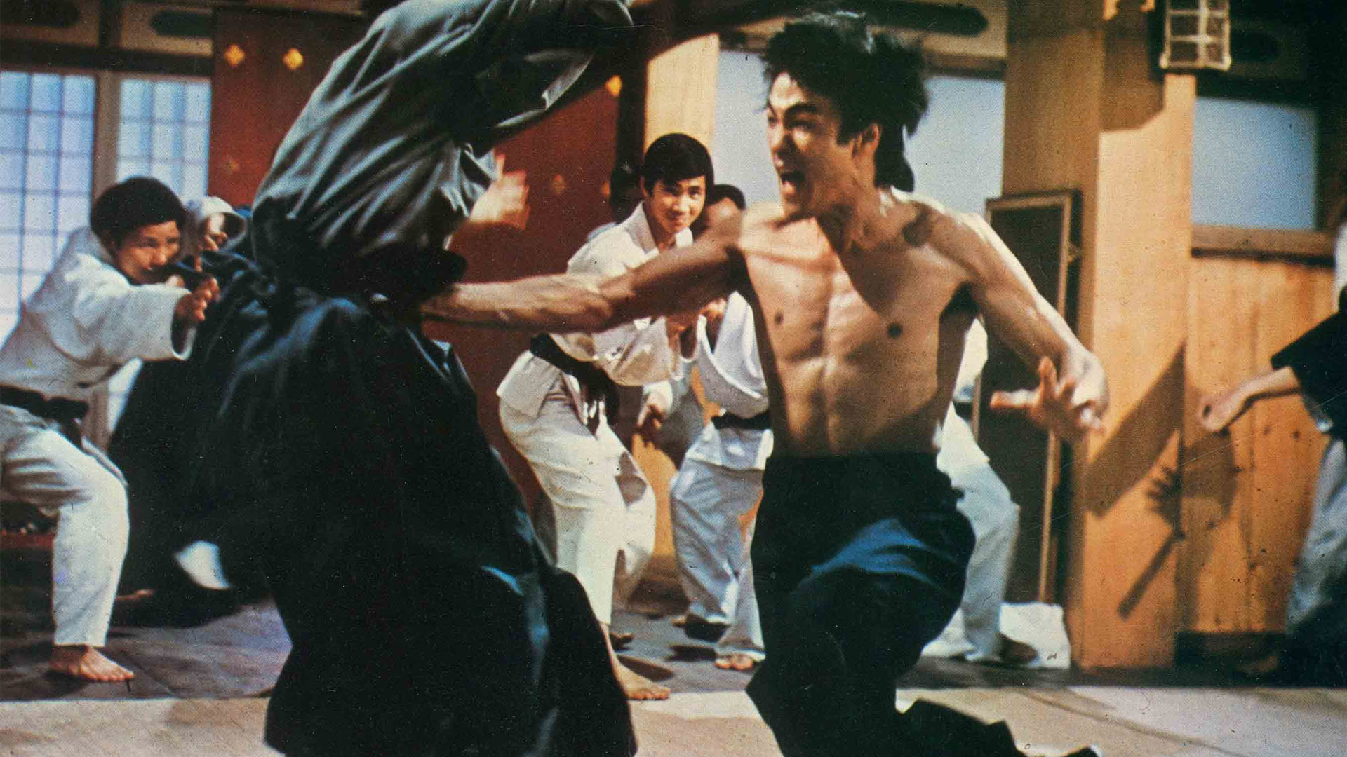 a history of the film genre martial arts The fighting is pretty tremendous, and this film is of the school of wire work (that's acrobatics and flight by use of barely visible wires, and a staple of the martial arts movie genre) where true martial artists can perform superhuman feats.