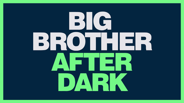 Big Brother After Dark - S21E45 - Day 45