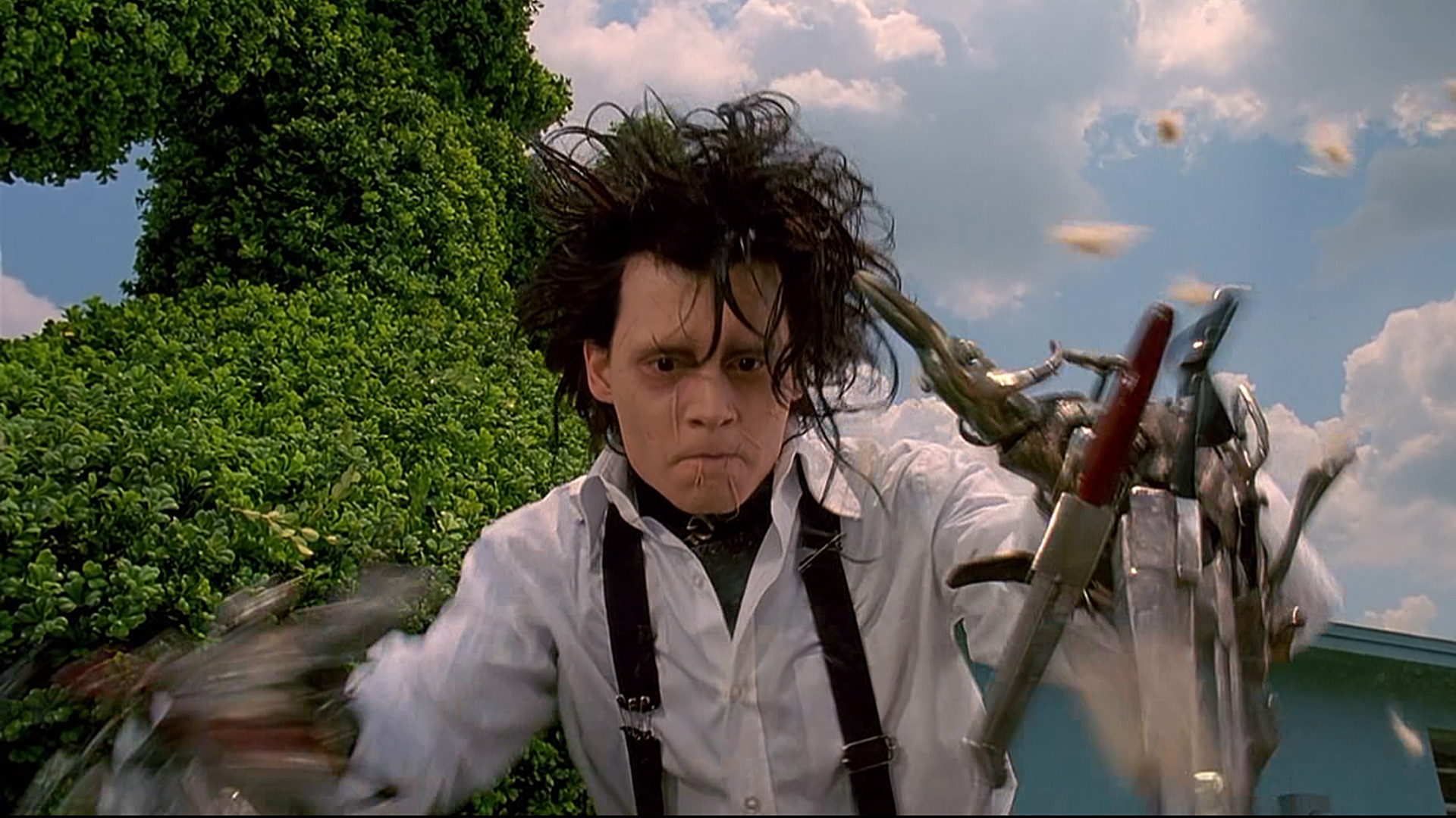 edward scissor hands vs tkam