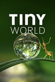 Tiny World