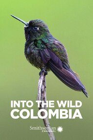 Into the Wild Colombia