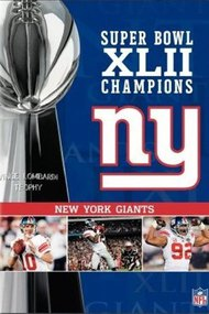 Super Bowl XLII Champions - New York Giants