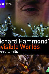Richard Hammond's Invisible Worlds: Speed Limits
