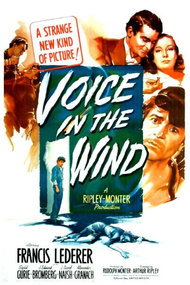 Voice in the Wind