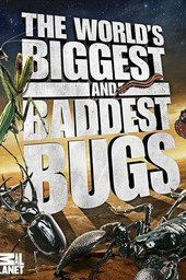 The World's Biggest and Baddest Bugs