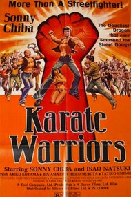 Karate Warriors