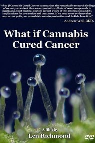 What If Cannabis Cured Cancer