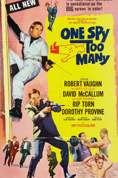 One Spy Too Many