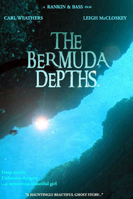 The Bermuda Depths