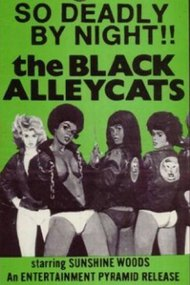 The Black Alley Cats