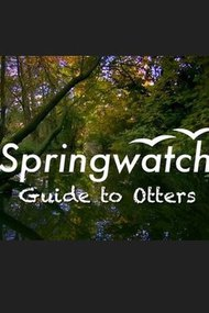 Springwatch - Guide to Otters
