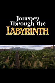 Journey Through the Labyrinth