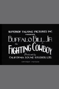The Fighting Cowboy
