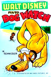 Dog Watch