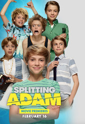 Splitting Adam