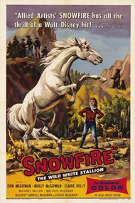 Snowfire