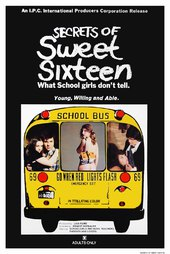 Secrets of Sweet Sixteen