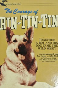 The Challenge of Rin Tin Tin