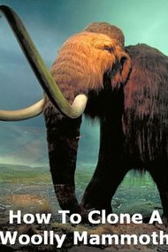 How To Clone A Woolly Mammoth