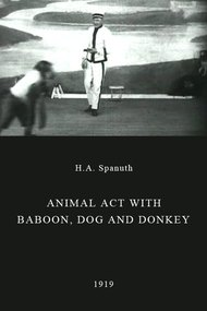 Animal Act with Baboon, Dog and Donkey