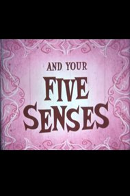You and Your Five Senses