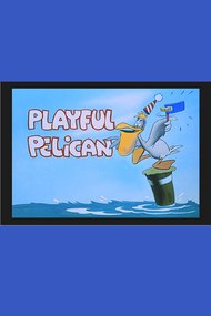 The Playful Pelican