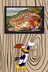 Woodpecker in the Rough