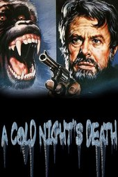 A Cold Night's Death