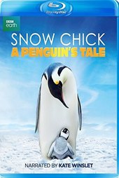 Snow Chick - A Penguin's Tale