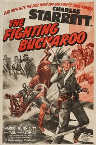 The Fighting Buckaroo