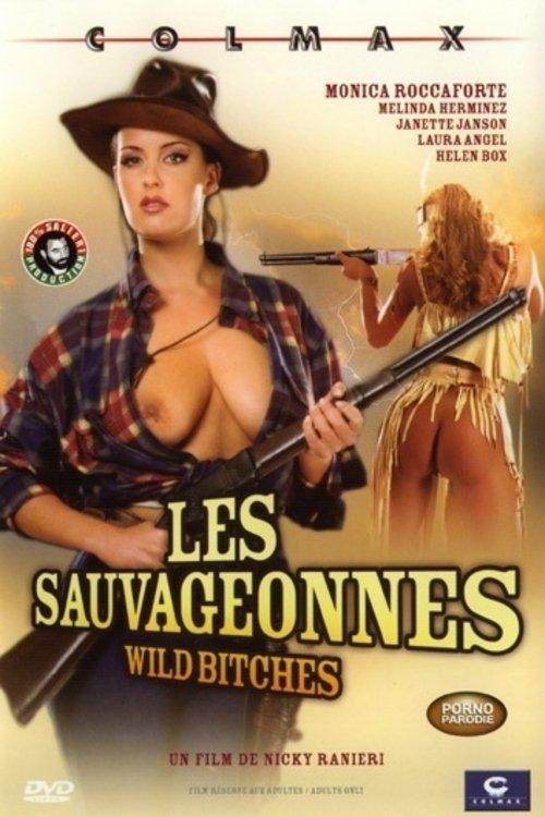 dvd-ozabochenniy-kovboy-erotika