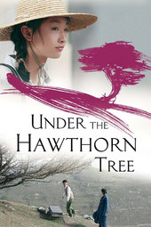 Under the Hawthorn Tree
