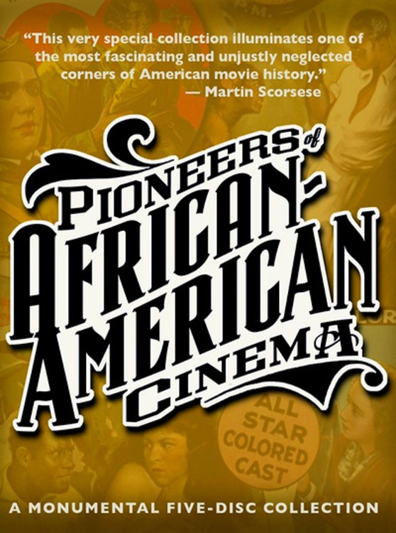 an introduction to the history of african americans in the united states