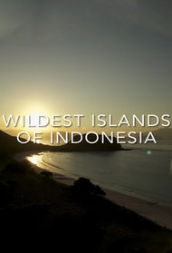 Wildest Islands of Indonesia