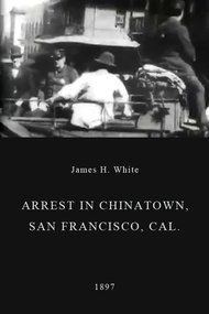 Arrest in Chinatown, San Francisco, Cal.