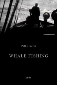 Whale Fishing