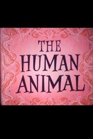 You the Human Animal