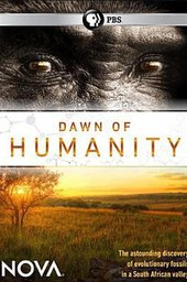 Dawn of Humanity