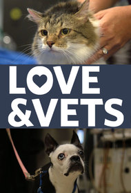 Love and Vets