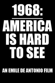 America Is Hard to See