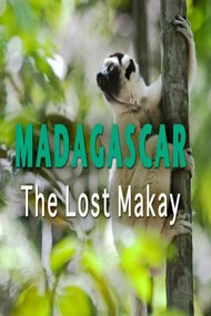 Madagascar: The Lost Makay