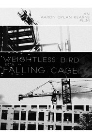 Weightless Bird In A Falling Cage