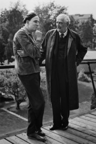 Behind the Scenes of Wild Strawberries