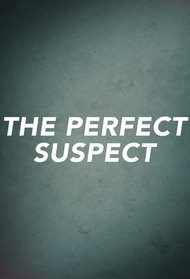 The Perfect Suspect