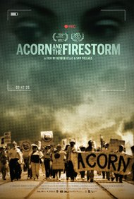 Acorn and the Firestorm